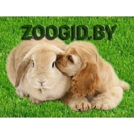 Лакомство для собак Green Qzin СИЛА (Сушеная куриная вырезка) 80г