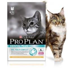 Pro Plan корм сухой для поддержания здоровья ротовой полости для взрослых кошек с курицей (0,4 кг.)