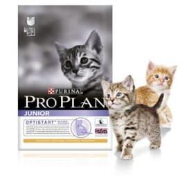 Pro Plan Корм сухой полнорацион. для котят с курицей. (0,4 кг.)