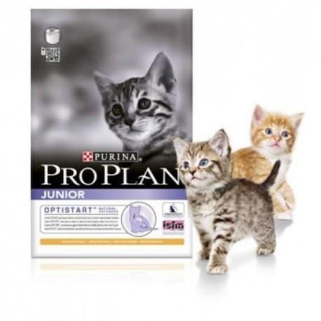 Pro Plan корм сухой с курицей для котят (1,5 кг.)