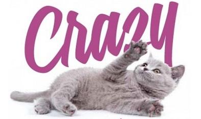 корм для котов craizy