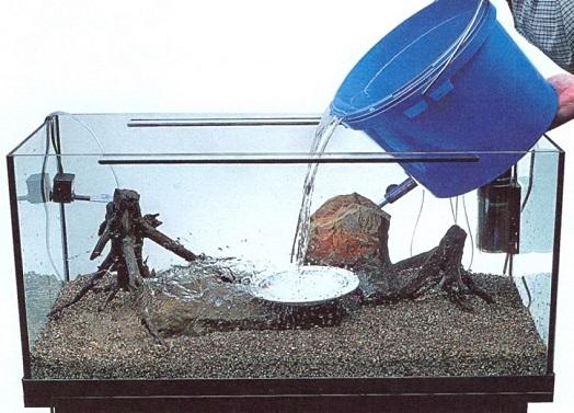 замена воды